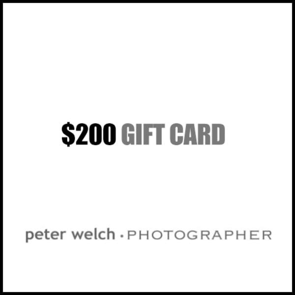 $200 Gift Card | Peter Welch