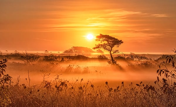 Long Point Fall Copper Fog Sunrise Art | Michael Blanchard Inspirational Photography - Crossroads Gallery