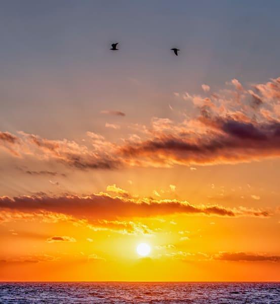 South Beach Sun Beam Gulls Art | Michael Blanchard Inspirational Photography - Crossroads Gallery