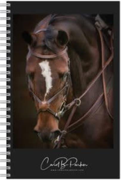 Photo Notebook   Bridle Portrait Of Biscuit | Carol Brooks Parker Fine Art Photography