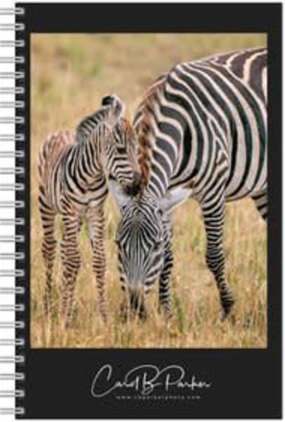 Photo Notebook   Stripes | Carol Brooks Parker Fine Art Photography
