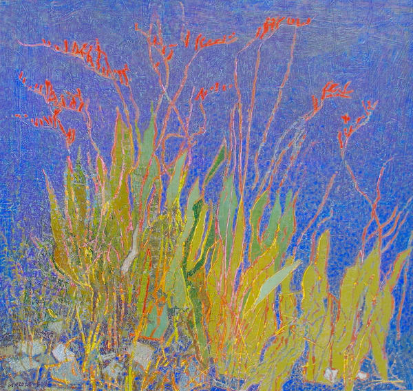 Crocosmia Art | Fountainhead Gallery