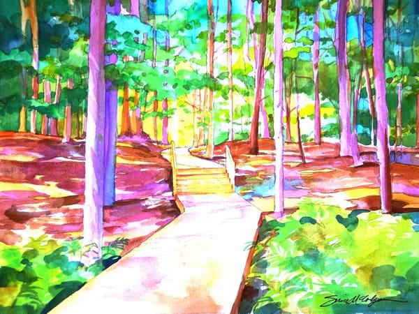 Rainbow Woods Art | susie mccolgan art