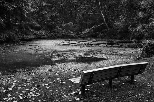 Retreat Photography Art | Peter Welch