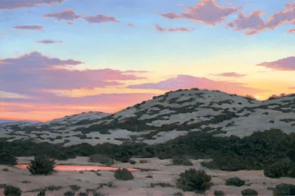 Sunset Over The Watering Hole  Art | Terry Sauve Fine Art