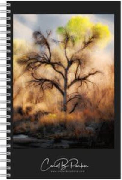 Photo Notebook   Winter Cottonwood | Carol Brooks Parker Fine Art Photography