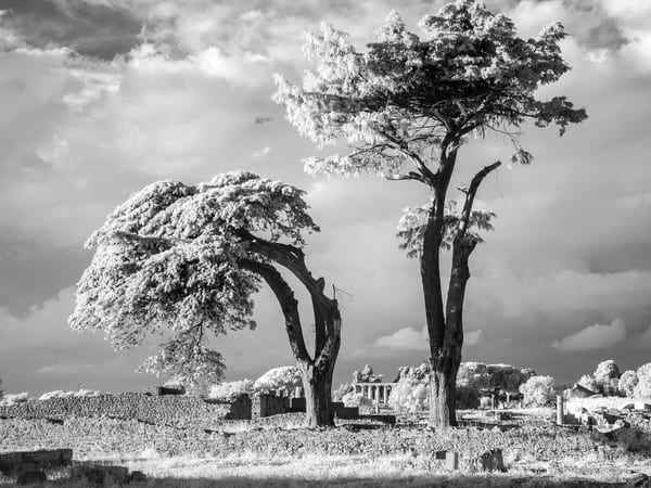 Genuflect Italy Photography Art | The World in Black and White