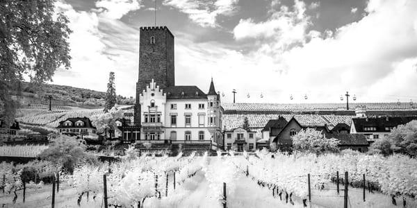 House Of Riesling Germany Photography Art | The World in Black and White