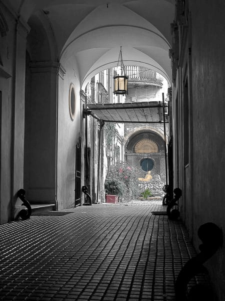 Private Garden Rome Photography Art | The World in Black and White