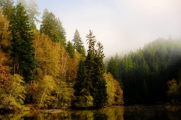 Foggy Autumn Morning, Lake Sylvia, Washington, 2020