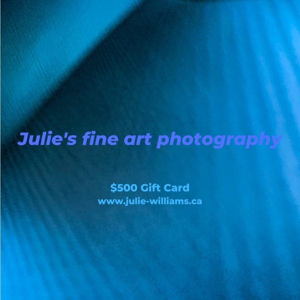 $500 Gift Card | Julie Williams Fine Art Photography
