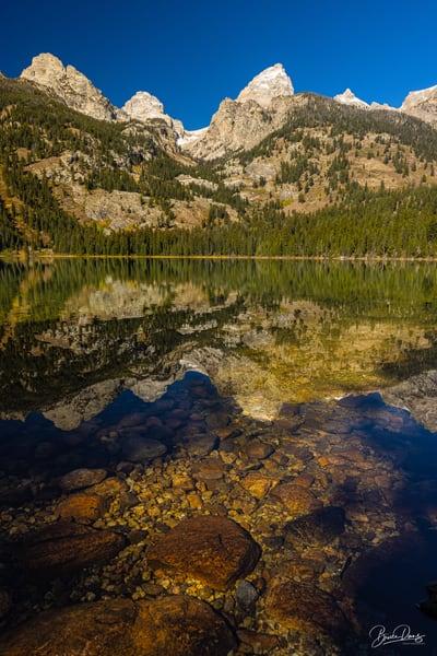 Bradley Lake Reflections and Bottom, Grand Taton National Park