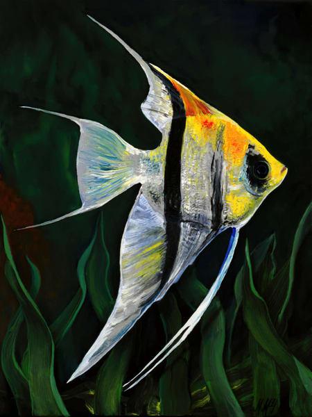 Angle Fish  Sunny Side Up | Original Mixed Media Painting Art | MMG Art Studio | Fine Art Colorado Gallery