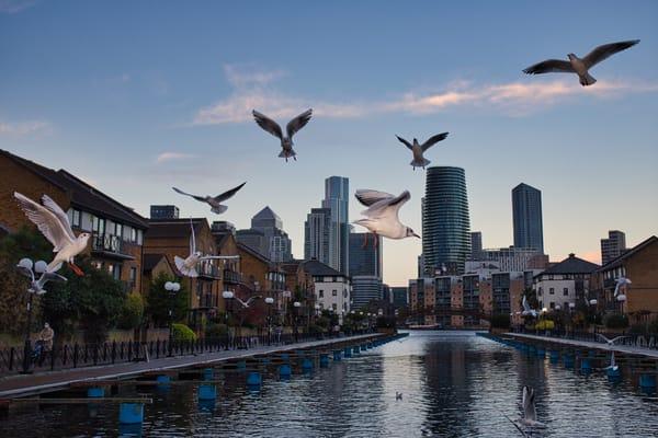 Milwall Docks 4 Art | Martin Geddes Photography