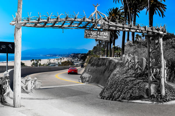 Entrance To The Sunset Trail At Santa Monica's Palisades Park Art | Mark Hersch Photography