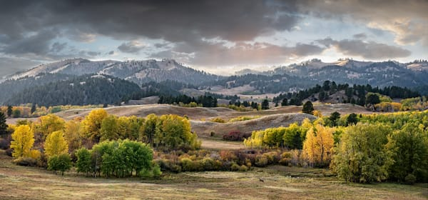 Whitetail Meadow Panorama Photography Art | Craig Edwards Fine Art Images