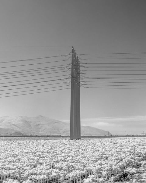 California Landscape Film Photography - High Tension Power
