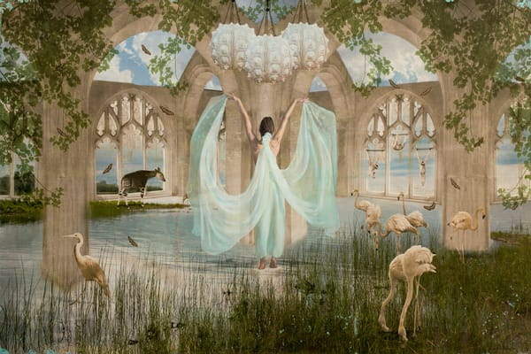 Mare Domum Art | Sondra Wampler | fine art