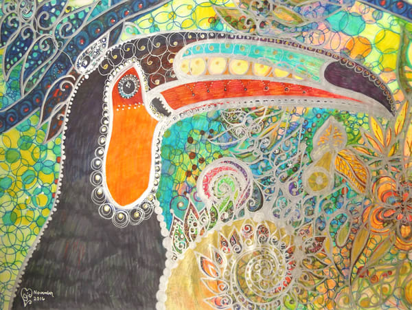 Merlin's Toucan Art   Cynthia Christensen Art