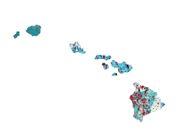 Hawaii Art | Carland Cartography