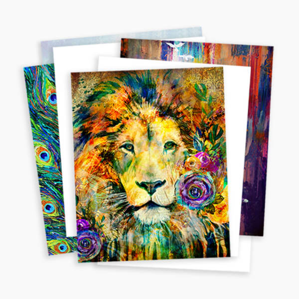 11x14 Print Bundle Art | Sally Barlow, Makaio Design