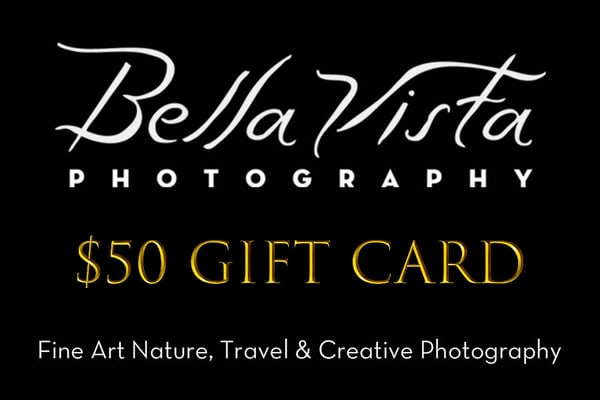 $50 Gift Card | Bella Vista Photography