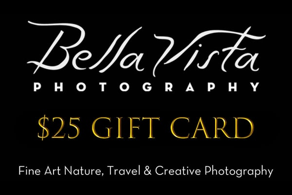 $25 Gift Card | Bella Vista Photography