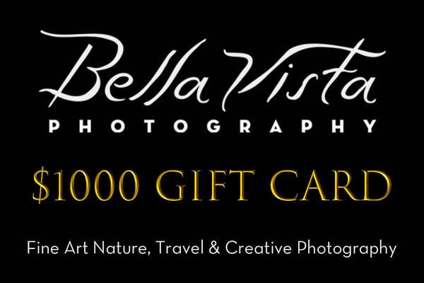 $1000 Gift Card | Bella Vista Photography