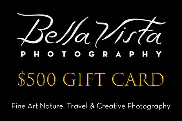 $500 Gift Card | Bella Vista Photography