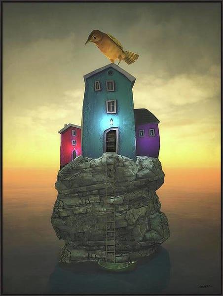 Artist Choice Bird House