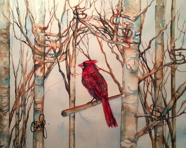 Stl Cardinals Baseball Art | Christy! Studios
