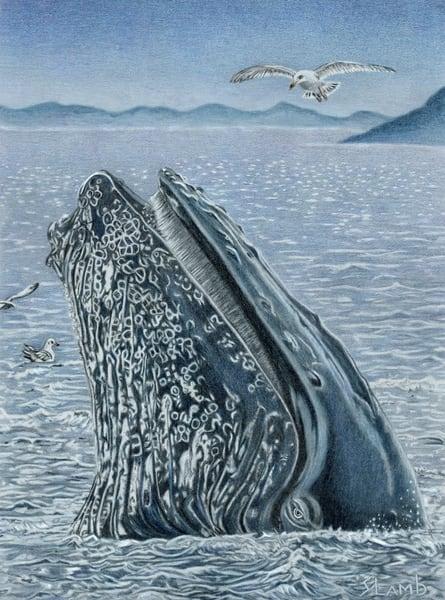 humpback, whale,ocean,art,blue,endangered
