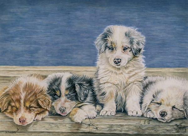 All In The Family Art   Sherry Lamb Fine Art