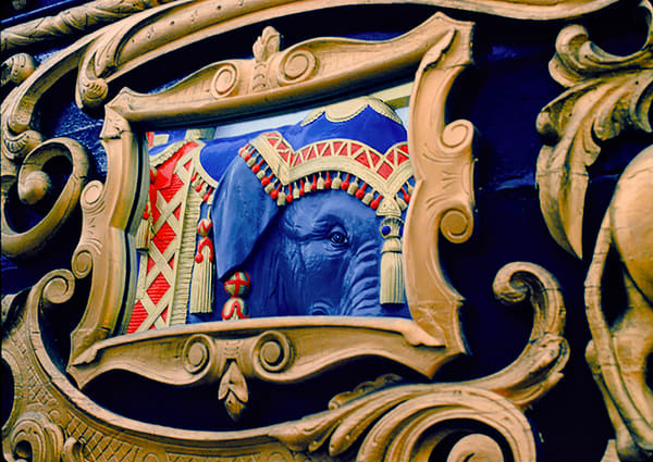Elephant Mirror Photography Art | Mark Stall IMAGES
