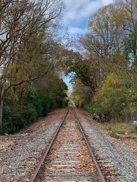 Noda Rail1 Art | Nisha Strain