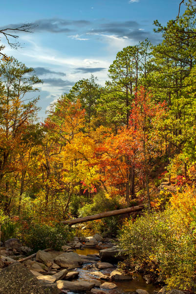 Autumn Cascades at Talladega National Forest