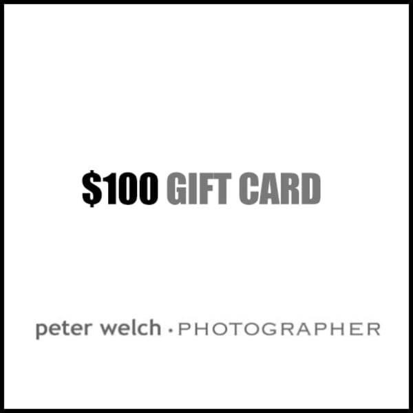$100 Gift Card | Peter Welch