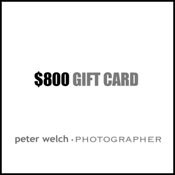 $800 Gift Card | Peter Welch