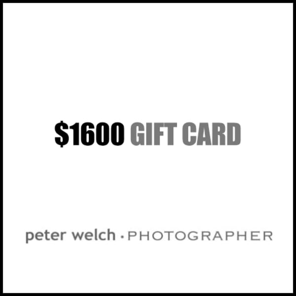 $1600 Gift Card | Peter Welch