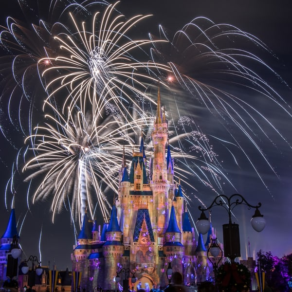 Happily Ever After Eugene And Rapunzel Photography Art | William Drew Photography