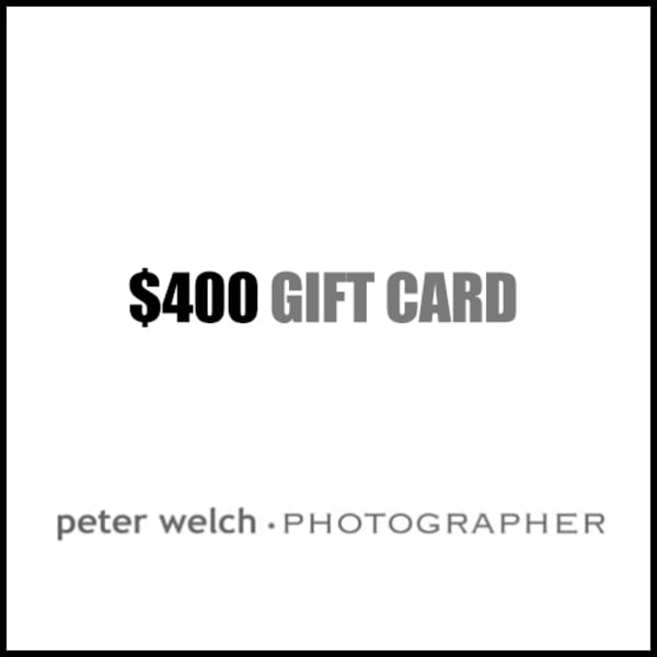 $400 Gift Card | Peter Welch