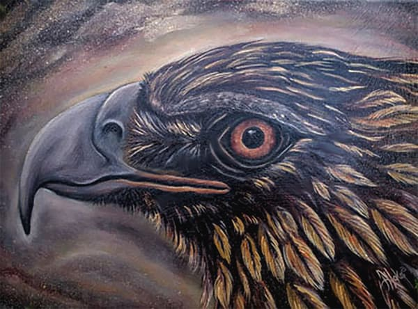 Hoke Gg3 Golden Eagle 18x20 Art | Friday Harbor Atelier