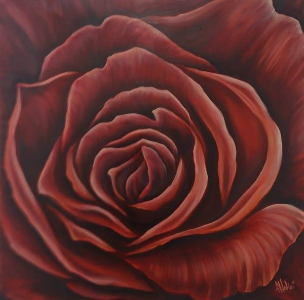 Hoke Winter Rose 20x20 Art   Friday Harbor Atelier