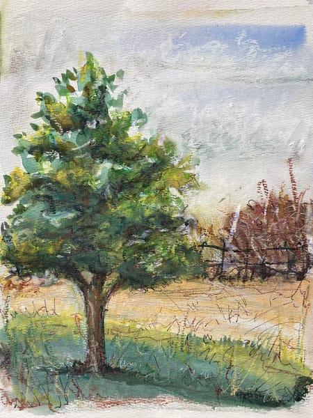 watercolor-landscapes, watercolor-tree, farmscape