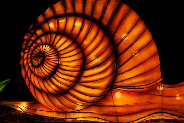 Lantern sculpture of a snail shell