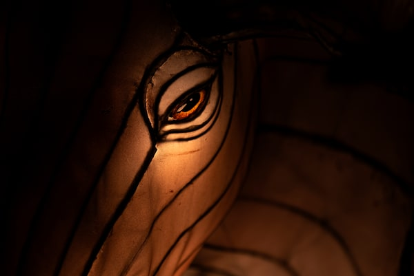 Closeup of a moose's eye lantern sculpture
