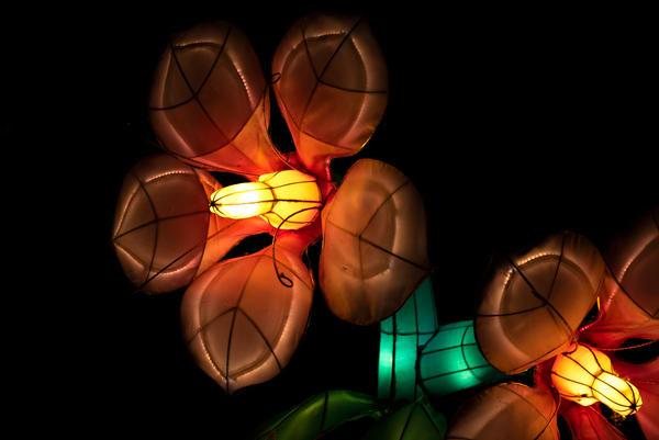 Glowing flower lantern sculpture