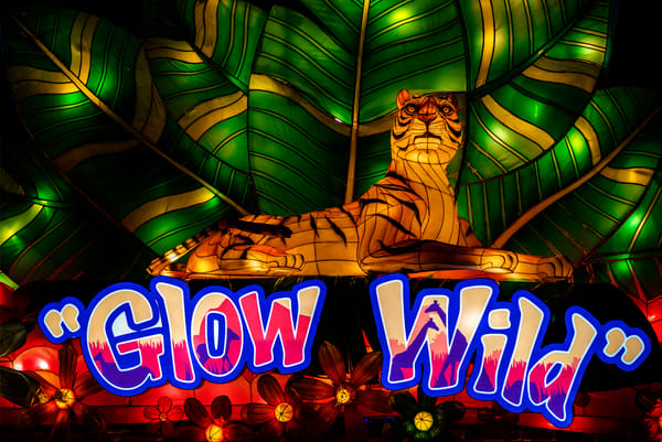Glow Wild event display