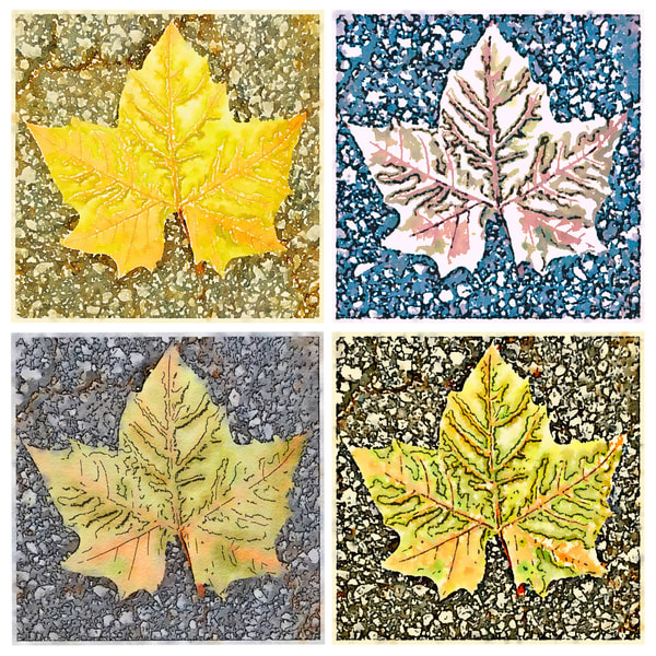 Four sycamore leafs, fall-leaf, photograph, leaf-watercolor