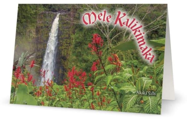 Mele Kalikimaka Akaka | Bird In Paradise